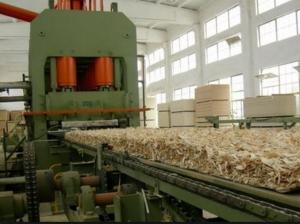 производство osb плит